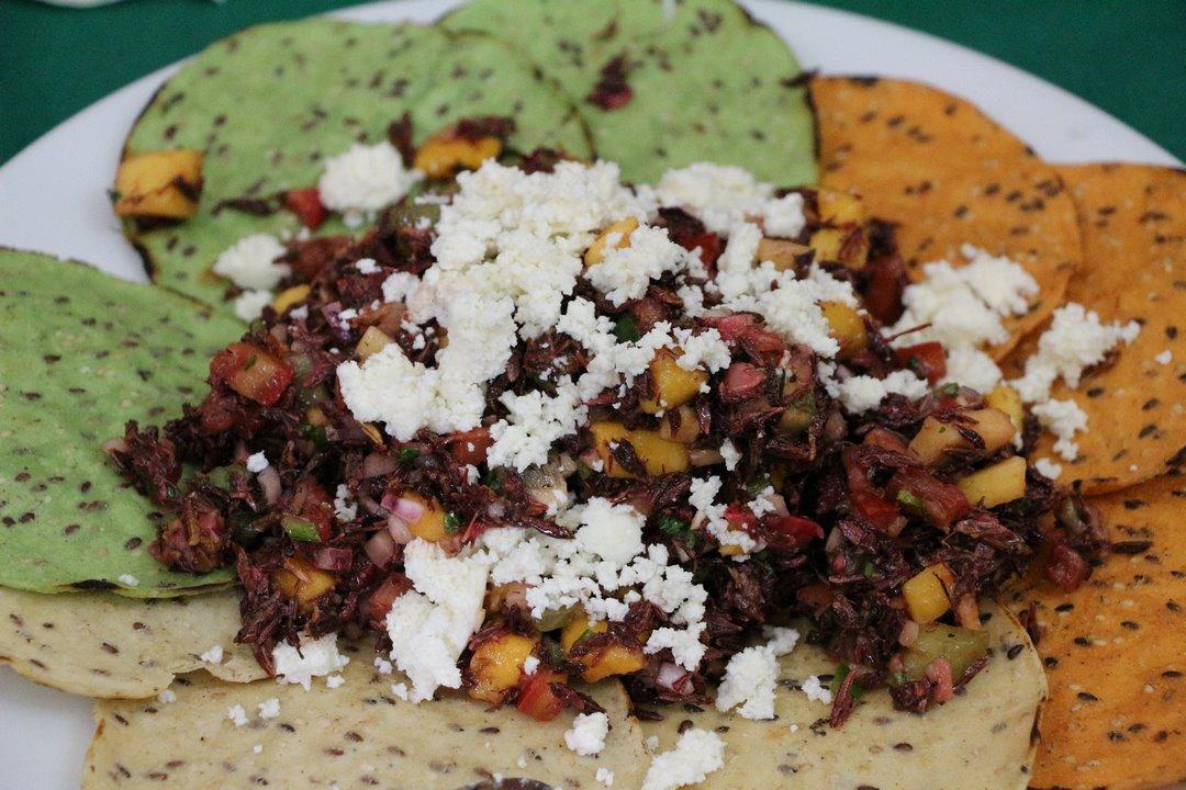 Ceviche de chapulín. Foto: Alesita Ríos